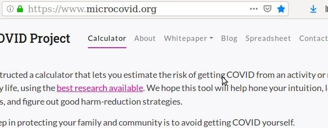 How I Think About COVID Risk: Calculate the Risk of Any Activity