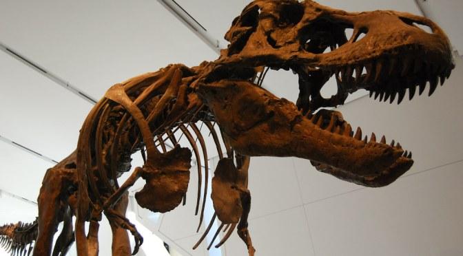 Video Game Sales Going Digital Could Make GameStop a Dinosaur