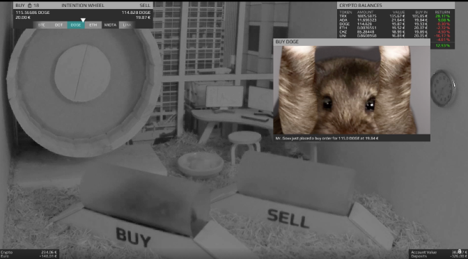 The Hamster Crypto Trader That's Outperforming Me